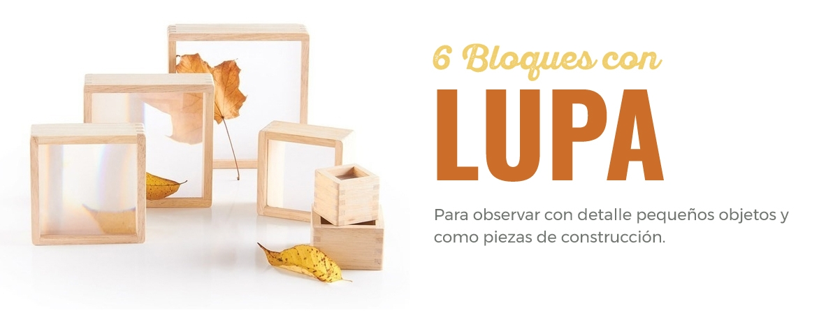 6 bloques con lupa