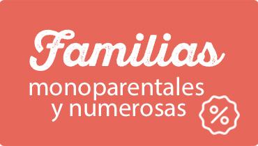 FAMÍLIAS NUMEROSAS Y MONOPARENTALES