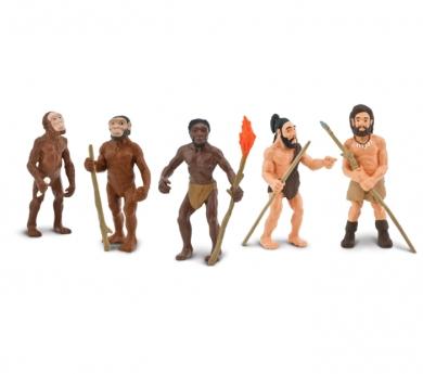 5 figuras evolución del hombre