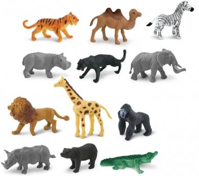 48 animales de salvajes pequeños