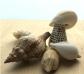 Conchas y caracoles de mar XXL variados 500 g.