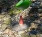 Bols con orificios para arena y agua