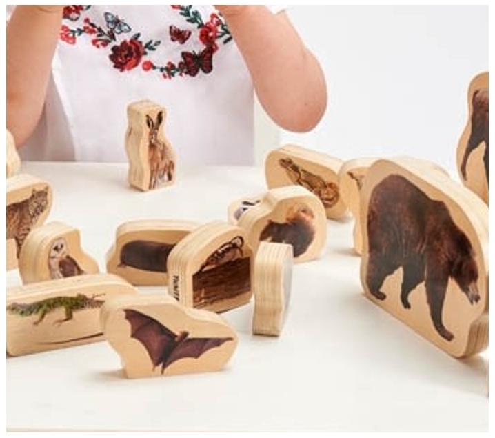 30 animals del bosc de fusta
