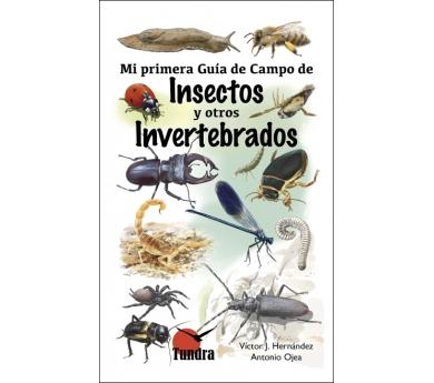 La meva primera Guia de Camp de Insectes i altres Invertebrats
