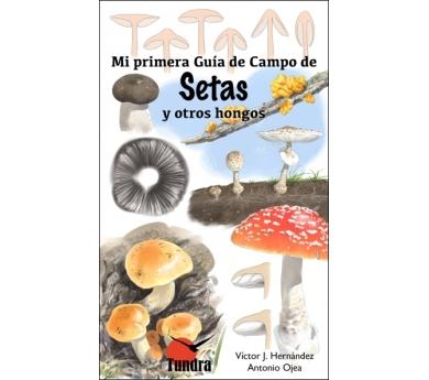 Mi primera guía de campo de setas y otros hongos