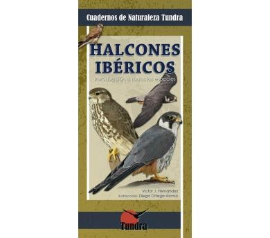 Quadern de la natura. Falcons ibèrics