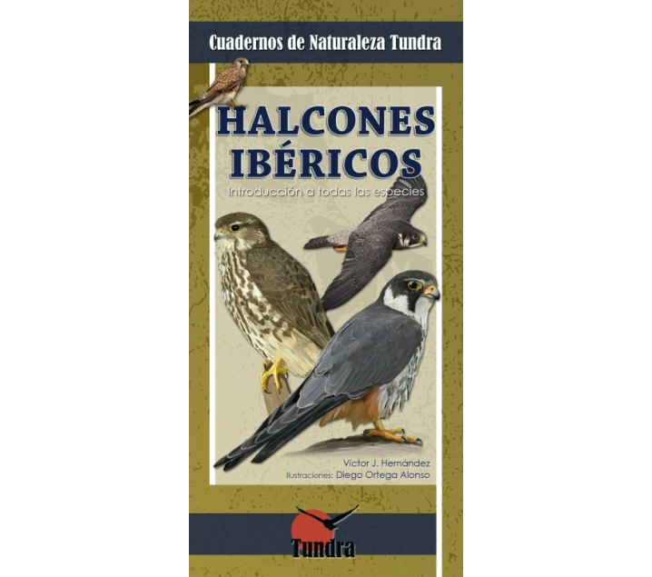Cuaderno de la naturaleza. Halcones ibéricos