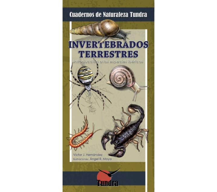 Cuaderno de la naturaleza. Invertebrados terrestres