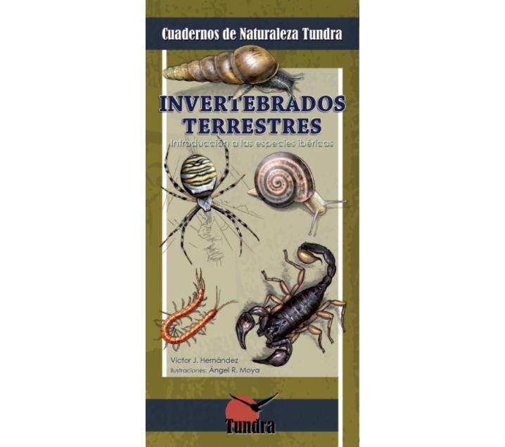 Quadern de la natura. Invertebrats terrestres