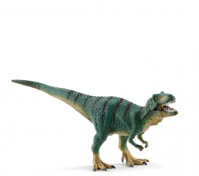 Cría de Tyrannosaurus Rex
