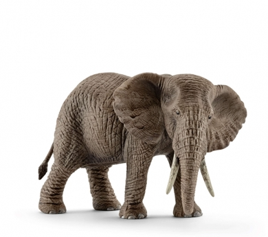Elefant africà