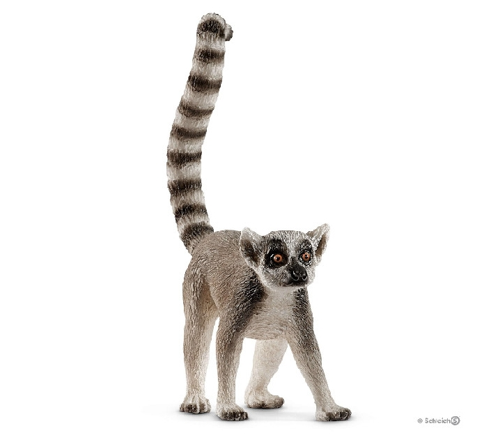 Lèmur