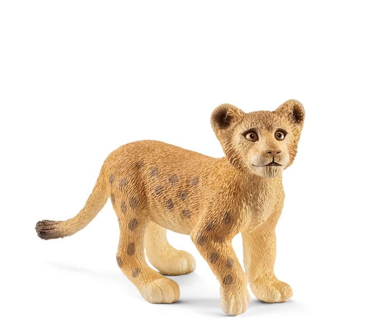 Cria de lleó