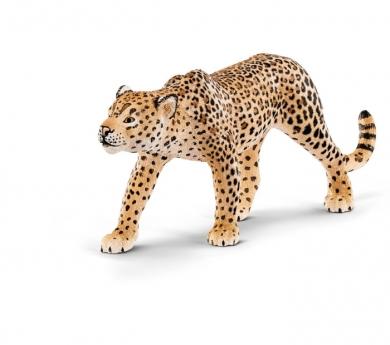 Lleopard