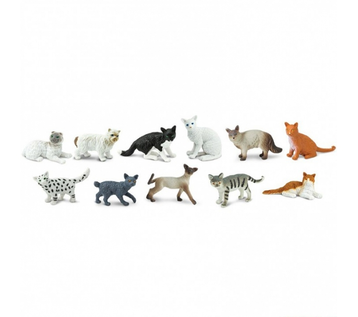 Tubo de gatos domésticos