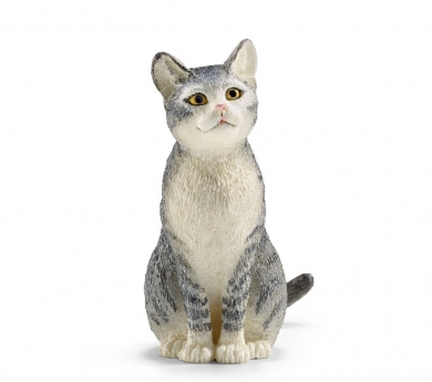 Gato sentado