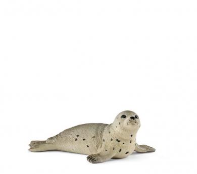 Cria de foca