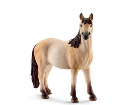 Euga Mustang