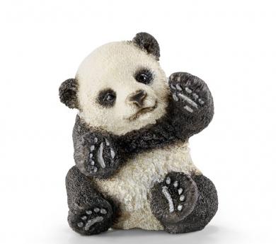 Cría d'Ós panda