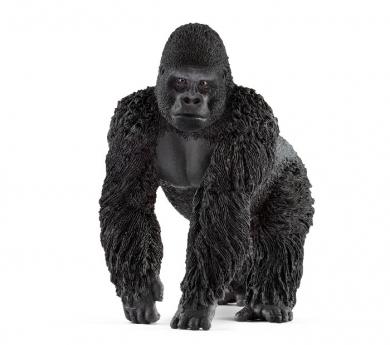 Goril·la mascle