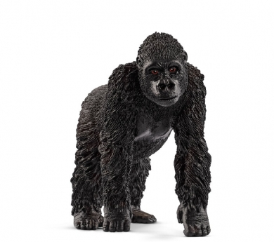 Goril·la femella