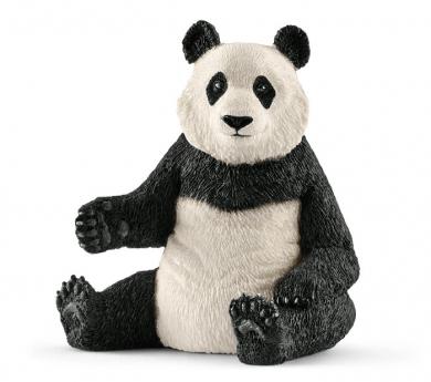 Osa panda hembra