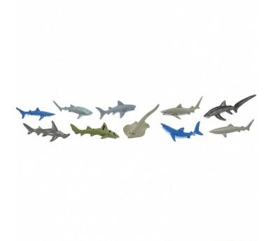 Tubo de tiburones