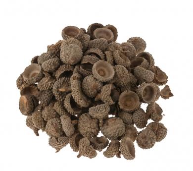 Cáscaras naturales de bellota 100g