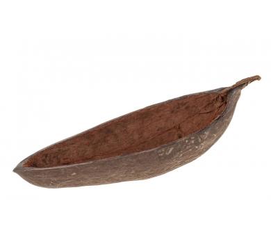 Cáscaras naturales del fruto del Baobab