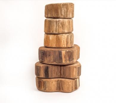 6 Discos de tronco muy grandes