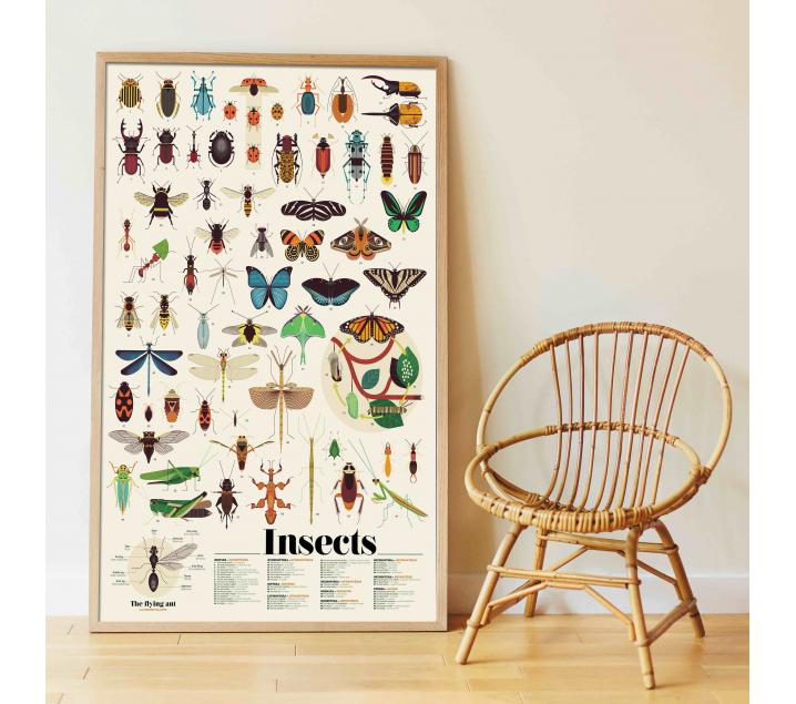 Insectos, gran poster con 44 pegatinas