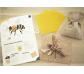Kit d'aprenentatge sobre les abellles