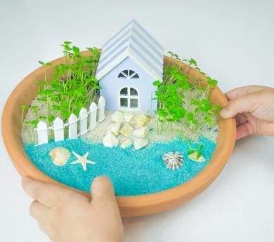Crea una platja en miniatura amb planes reals