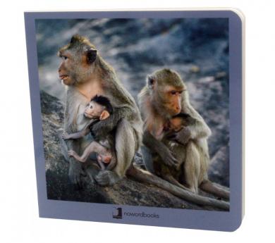 Libro de imágenes ANIMALES Y SUS FAMILIAS II