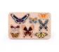 Juego de encajes mariposas