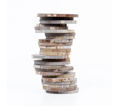 Rodajas de madera. 25 pzas