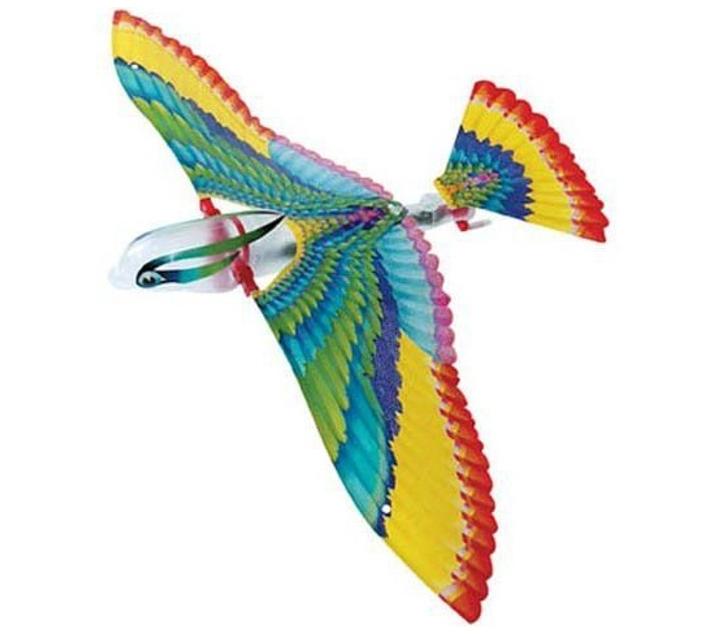 Ocell Tim