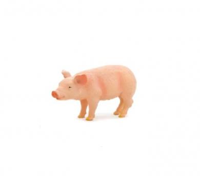 Cría de cerdo