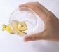 Gots per experimentació amb sorra i aigua
