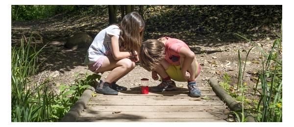 Exploradores y juegos en la naturaleza